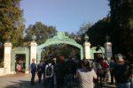 gate, UCB