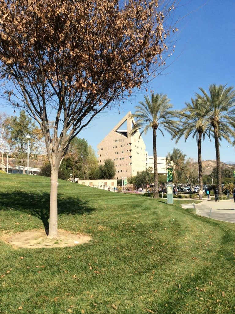 Magellan College Counseling Cal Poly Pomona (18)