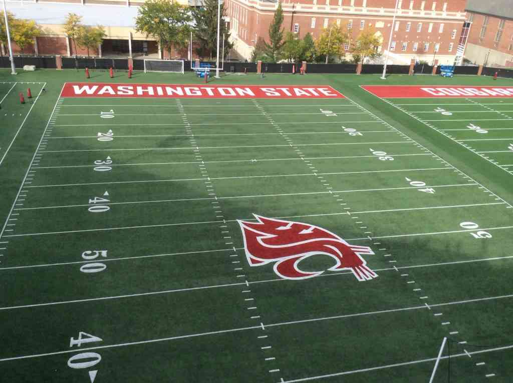 Magellan College Counseling - Washington State Univ football field 1