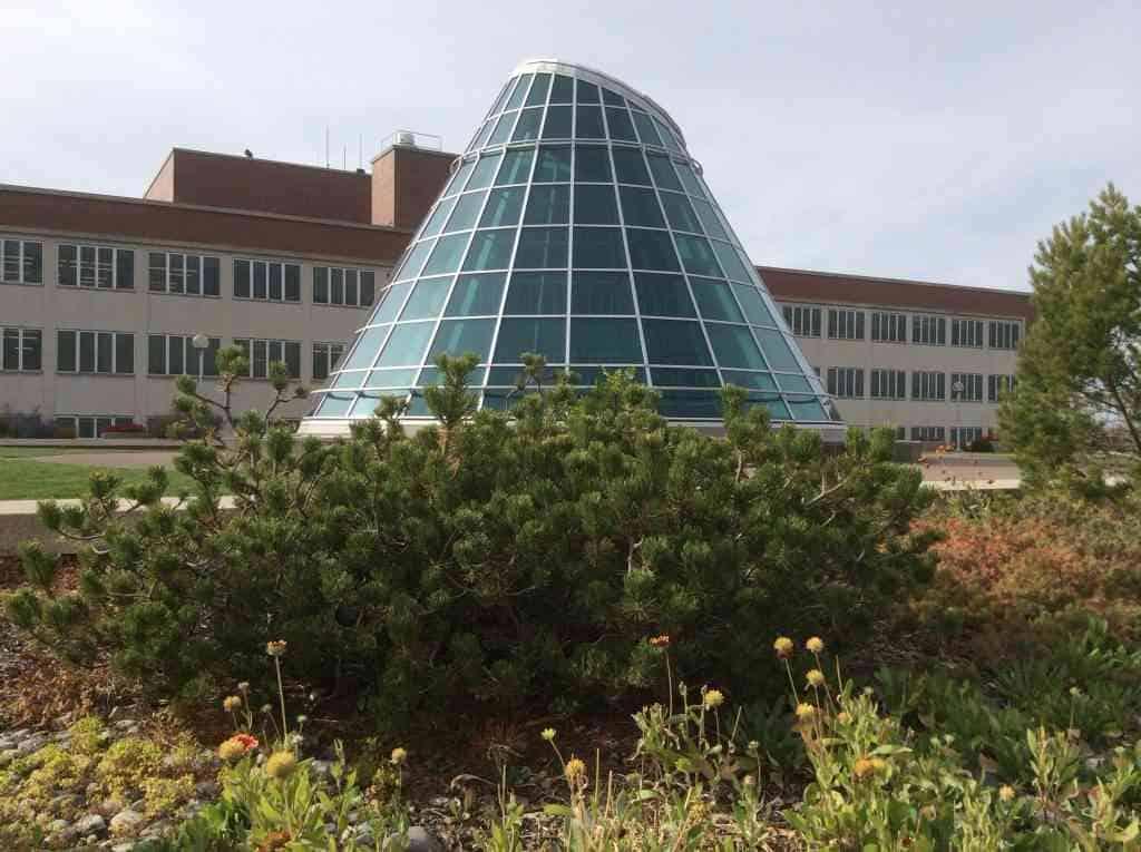 Magellan College Counseling - Washington State Univ Library atrium 1