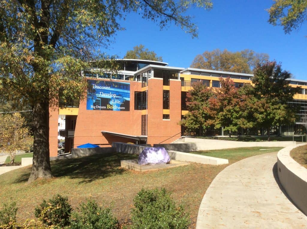 Magellan College Counseling - Averett University student center 2