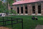 CU-Boulder-lawnview