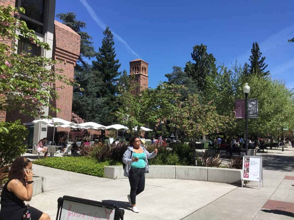 Chico State Counseling >> Chico State University 2019 3 Magellan College Counseling