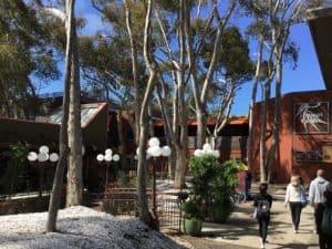 UC San Diego John Muir College