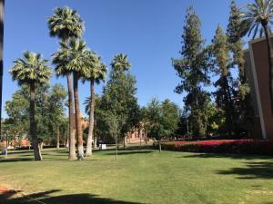ASU-Beautifully-landscaped