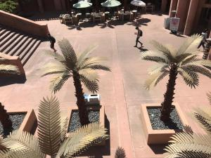ASU-Hayden-Library-courtyard