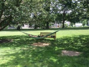 Bryn-Mawr-College-hammocks-quad