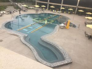 CU-Boulder-Ralphie-Pool