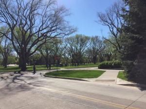 Colo-State-Grounds