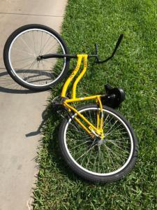 Eckerd-College-150-Yellow-Bikes