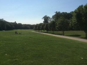 Olin-College-grassy-quad-behind-dorms