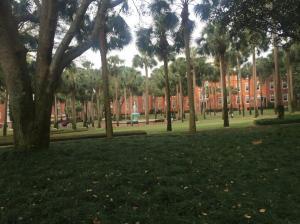 Stetson-University-Palm-Court-1