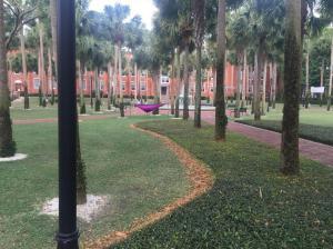Stetson-University-Palm-Court-2