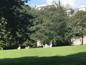 Swarthmore Arboretum 2