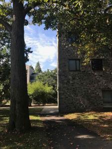 Swarthmore Campus Vibe 2