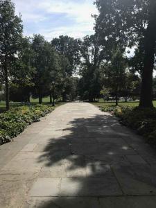 Swarthmore Magill Walk 2