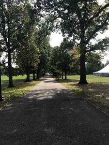 Swarthmore Magill Walk 4