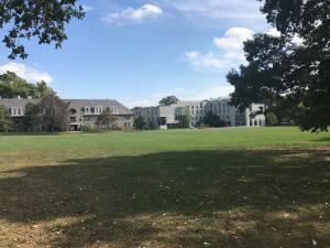 Swarthmore Organic Lawn
