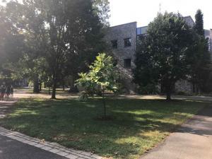 Swarthmore campus