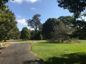 Swarthmore green space