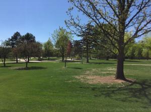 U-Northern-Colorado-Campus Green-Space