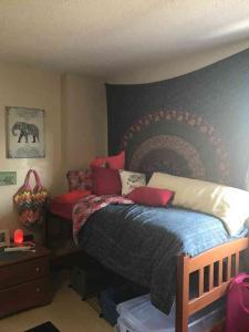 U-Tampa-Dorm-Room-(model)