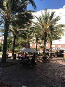 U-Tampa-Popular-study-spot