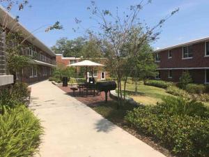 U-Tampa-Residential-quad