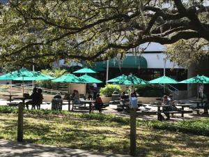 U-of-South-Florida-Arts-Sciences-outdoor-seating