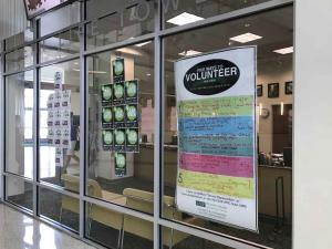 U-of-South-Florida-Marshall-Center-volunteer-opportunities