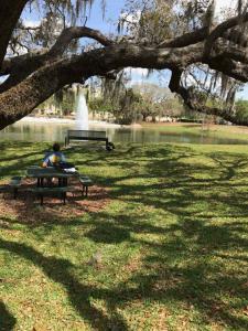U-of-South-Florida-Solitude-reflection