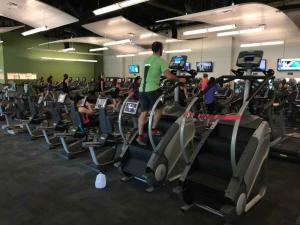 U-of-South-Florida-fitness-space