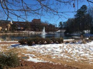 UNC-Charlotte-lake-near-academic-quad