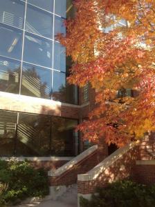 Colorado-College (16)