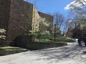 Loyola-Maryland-campus-visit (19)