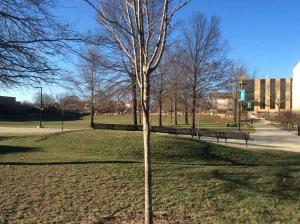 Missouri-University-Science-Technology (30)