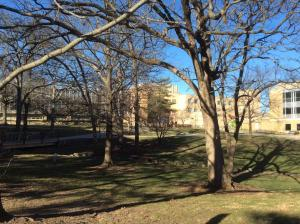 Missouri-University-Science-Technology (8)