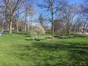 Oberlin-College-campus-visit (2)