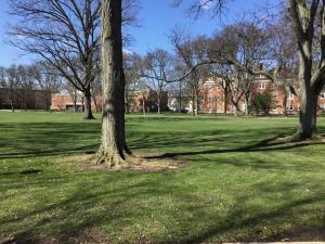 Oberlin-College-campus-visit (20)