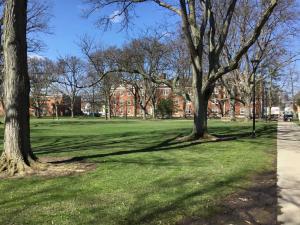 Oberlin-College-campus-visit (21)
