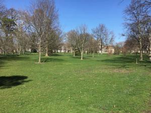 Oberlin-College-campus-visit (3)