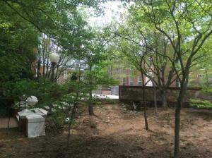 St-Johns-College-Annapolis (12)