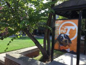 University-of-Tennessee-visit-2019 (29)