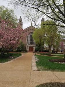 Washington-University-St (1)