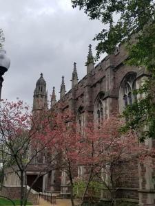 Washington-University-St (2)