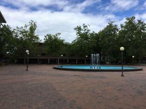 Western-Washington-University-campus-visit (15)