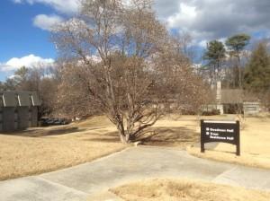 Oglethorpe-University-path-freshman-dorms