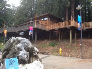 UC-Santa-Cruz-visit-Student-Union-Redwood-Building