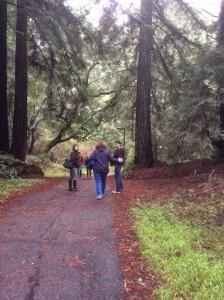 UC-Santa-Cruz-visit-campus-path-2