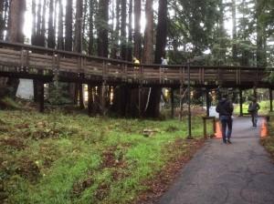 UC-Santa-Cruz-visit-footbridge